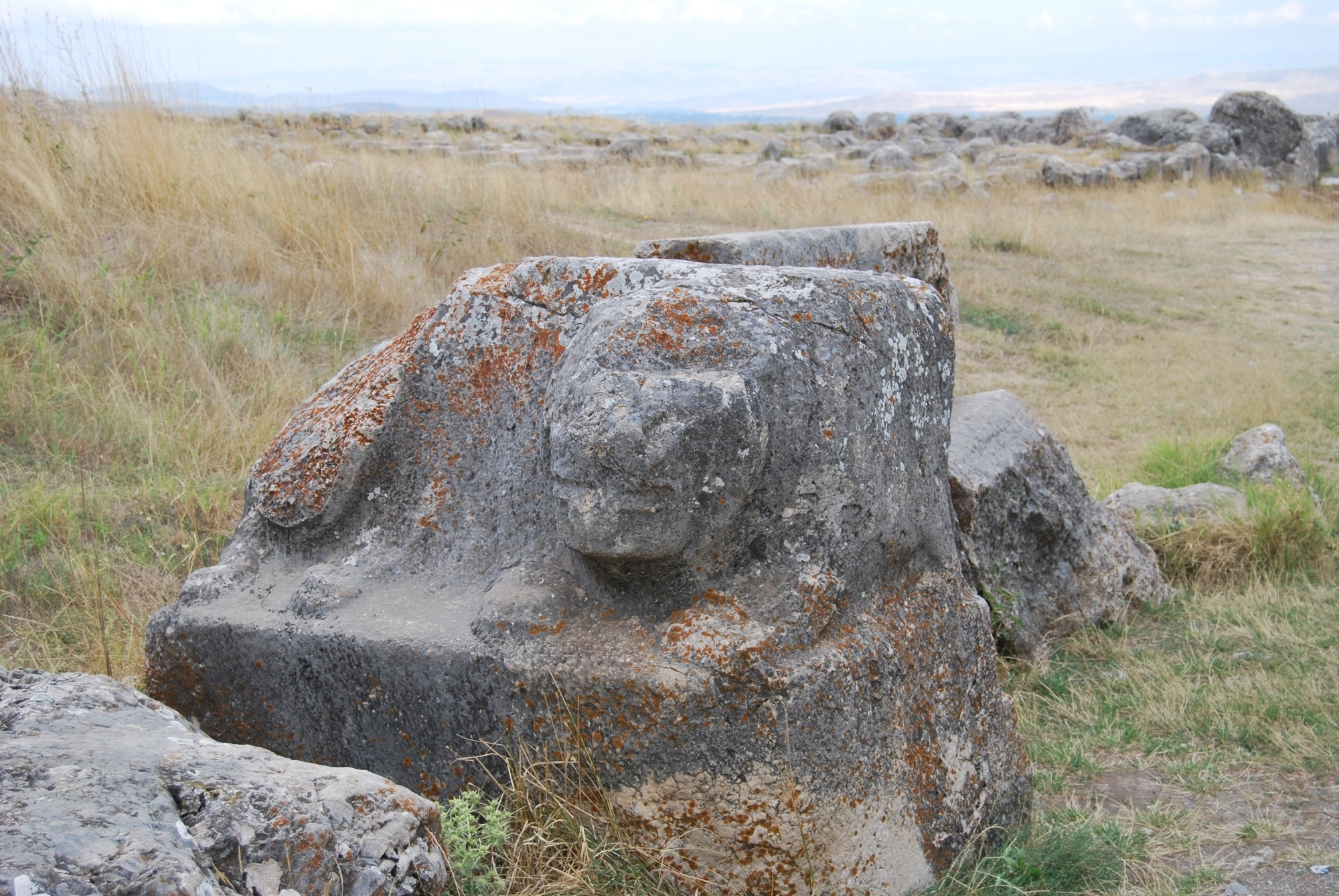 The Lion Tub, outside the Grand Temple in Hattusa