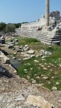 Ancient architecture in the quagmire
