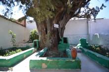 Üçler Dede Türbesi or the Tomb of Three Grandfathers in Edremit