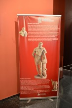 Weary Heracles in Antalya Archaeological Museum