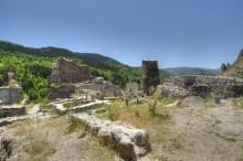 Şavşat Castle