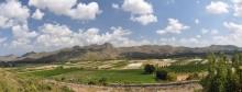 Stadium in Aspendos - panoramic view