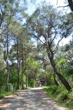 Karatepe - Aslantaş sightseeing path